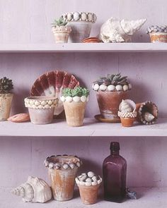 Find out how to make seashell crafts for your creative summertime projects. Here, a craft for everyone made using seashells. Beach Crafts, Summer Crafts, Fun Crafts, Crafts For Kids, Summer Diy, Summer Garden, Seashell Projects, Seashell Crafts Kids, Deco Marine