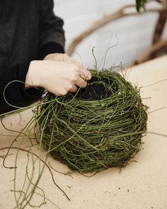 Wona Bae weaves a beautiful basket at Loose Leaf in Collingwood, Melbourne. Photo – Sean Fennessy for The Design Files. Willow Weaving, Basket Weaving, Straw Weaving, Deco Floral, Floral Design, Leaf Design, Contemporary Baskets, A Well Traveled Woman, Deco Nature