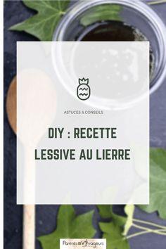 DIY : ma recette de lessive au lierre ultra facile maison. Plastic Cutting Board, Herbs, Blog, Zero Waste, Parents, Glass Jars, Dads, Herb, Blogging