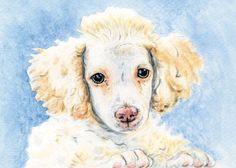 Custom pet portrait watercolor painting / 5 X 7 $80