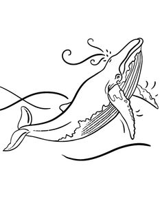 printable whale coloring page free pdf download at httpcoloringcafecom