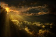 Photograph Penumbra by jose arley agudelo on 500px