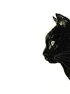 Cat Art  Black Cat with White Whiskers   Original by corelladesign, $20.00
