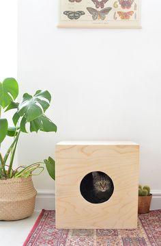 DIY | cat house @burkatron