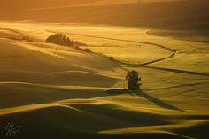 """The Schmalouse"" by Alex Noriega. Sunset light streams over farmland  hills -- Palouse, Washington."