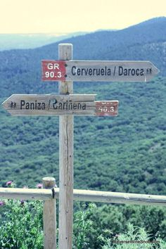 Follow the sign to Carinena for one of the best values in the wine world!