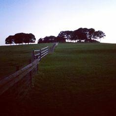 #lastnight #silhouette #countryside #Yorkshire #landscape #sky #photography