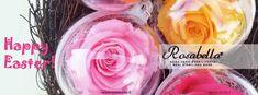 Buona Pasqua! #Happy Easter #Pasqua2021 #rosabella #rosagioiello #rosastabilizzata Icing, Rose, Desserts, Tailgate Desserts, Pink, Deserts, Postres, Dessert, Roses