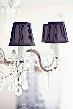 Love the lamp shades
