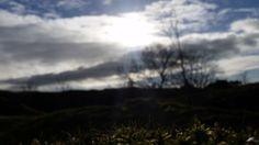 Ubley Warren Nature Reserve, Mendip Hills, Somerset.. looks like The Shire