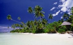 Samoan simplicity