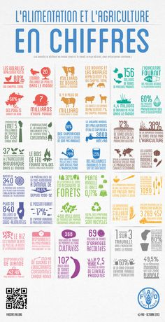 Our food and agriculture in numbers: from the Food and Agriculture Organization of the United Nations (FAO) Ag Science, Animal Science, Agriculture Statistics, Agriculture Industry, Farm Facts, Human Geography, Gcse Geography, Environmental Science, United Nations