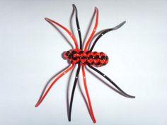Araignée de Sofolle