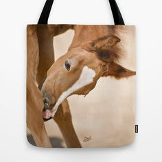Digital Painting 2 - Colt Tote Bag by Horseaholic - $22.00