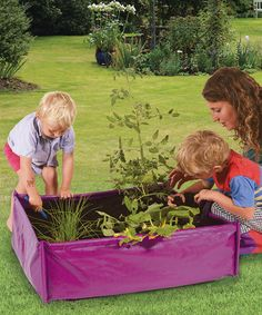 Purple Kids' Vegetable Garden Patio Planter #zulily #zulilyfinds