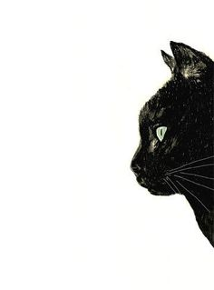 Cat Art Black Cat with White Whiskers Print of by corelladesign (cat,drawing)