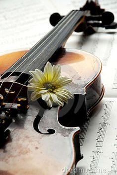 In music one must think with the heart and feel with the brain. (Geroge Szell)