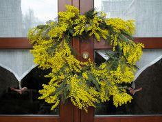 wattle wreath for an Aussie christmas