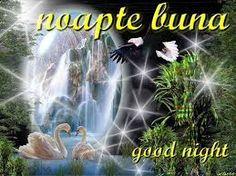 Imagini pentru imagini haioase pt noapte buna Good Night, Comic Books, Plants, Photos, Have A Good Night, Drawing Cartoons, Flora, Cartoons, Comics