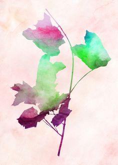 Maple2_Watercolor - Art Print by Garima Dhawan & Jacqueline Maldonado
