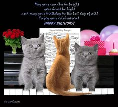 88 Best Cat Birthday Cards Images