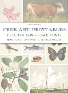 Finding, customising and printing large-scale art from free printables (thorough tutorial) | The Painted Hive