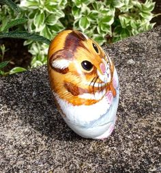 Hamster hand painted beach rock pebble stone no cage wheel water bottle or food | eBay