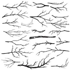 Set of hand-drawn wood branches vector art illustration Branch Drawing, Branch Art, Vine Drawing, Free Vector Graphics, Free Vector Art, Draw Tree, Tree Branch Tattoo, Branch Vector, Branches