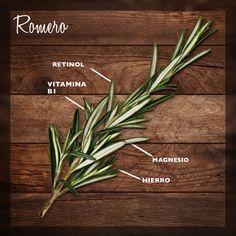 El romero es una planta de fácil cultivo, no necesita de gran cantidad de agua y requiere un bajo tratamiento con químicos y abonos; crece en diferentes clases de suelo lo que hace que sea rentable su producción.