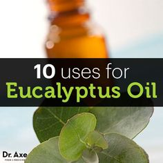 10 Uses for Eucalyptus Oil ~ Interested in PURE™ Essential Oils? Let's Connect! Email me at livegreenwithginny@gmail.com #PURE™ #EssentialOils #Melaleuca