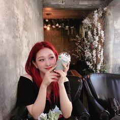 Atualização Do Instagram, South Korean Girls, Korean Girl Groups, Lee Seo Yeon, Karin Uzumaki, Ariana Grande Facts, Sam And Cat, Cat Valentine, Big Sean