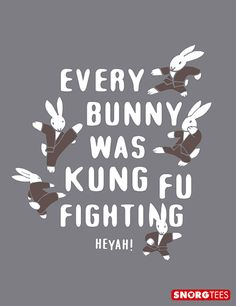 """""""Every Bunny Was Kung Fun Fighting"""" t-shirt"""