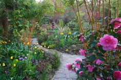 Path through the spring middle garden (6th May) | Flickr - Photo Sharing!