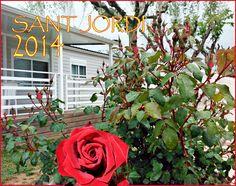 Bona diada de Sant Jordi 2014! www.riembau.com