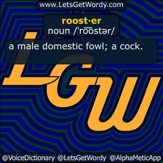 rooster 01/28/2017 GFX Definition of the Day roost·er noun /ˈro͞ostər/ a #male domestic #fowl ; a #cock #LetsGetWordy #dailyGFXdef #rooster #chicken