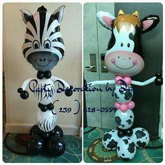 Zebra and vaquita