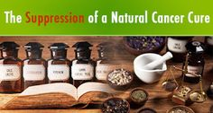 Be Balanced: The Suppression of a Natural Cancer Cure