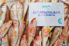 """Κατακλύζει τις ελληνικές θάλασσες το Νοέμβρη, αλλά και όλο το χειμώνα! Γι' αυτό, προτιμήστε το ολόφρεσκο, ελληνικό μπαρμπούνι του Πσαρά, και δείτε αμέσως, στην ποιότητα, αλλά και τη γεύση, τη διαφορά! ☎️ Delivery: 2310232228  Τώρα στον """"Πσαρά"""" σας, τα παίρνετε και ψημένα ή τηγανισμένα!!"""