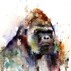 GORILLA Large Watercolor Print by Dean Crouser by DeanCrouserArt