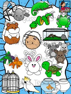 Small Pets Clipart Bundle from tongassteacher on TeachersNotebook.com -  (33 pages)  - This 33 piece clipart bundle features a variety of small pet animal graphics! This Small Pets Bundle includes a hamster, hamster wheel, guinea pig, chinchilla, mouse (3 different colored mice), rabbit, cockatoo, bird cage,  gold fish, beta fish, fishbowl