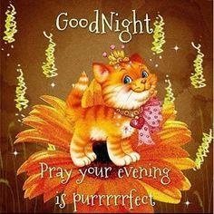 Good Night Beautiful!!!! Hope you sleep well and have beautiful dreams…
