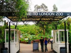 London Zoo Top 45 Tourist Attractions in London, Monuments, London City Guide, London View, London Attractions, European Vacation, London England, Tourism, Pergola, Outdoor Structures