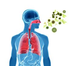 ¿Qué son las alergias? - http://plenilunia.com/publirreportaje/que-son-las-alergias/36227/