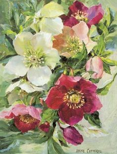 Hellebores - 'Midwinter Bouquet' - Blank Card - Mill House Fine Art – Publishers of Anne Cotterill Flower Art Art Floral, China Painting, Watercolour Painting, Watercolor Flowers, Impressions Botaniques, Illustration Blume, Botanical Prints, Beautiful Paintings, Art Pictures