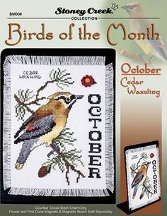 Birds of the Month ~ October