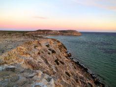 Whalebone Bay - Shark Bay WA
