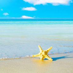 Playa de Hawaii