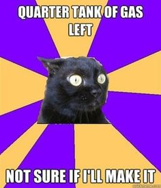 Anxiety Cat | ---I'm always this way because my first car's gas gauge would tell me I had more gas than I did and I almost ran out a few times.  ~@glamour_scars