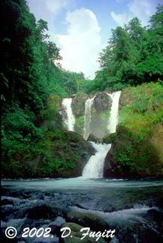 Trinity Falls - St. Vincent and the Grenadines