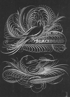 Blackboard Bird